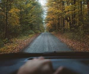 autumn, car, and nature image