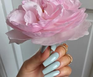 accessories, blue, and flower image