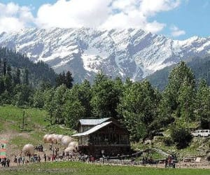 manali honeymoon packages image