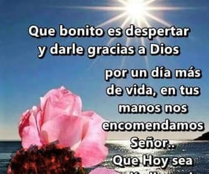 frases and lindas image