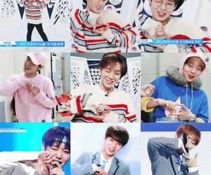 gif, seongwoo, and kang daniel image