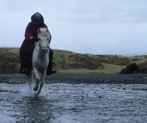 horse, joseph, and josh image
