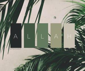 allah, green, and islam image