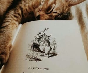 alice in wonderland, cat, and chapter image