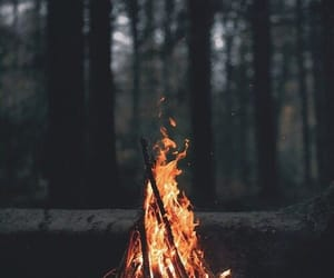 aesthetic, nature, and bonfire image