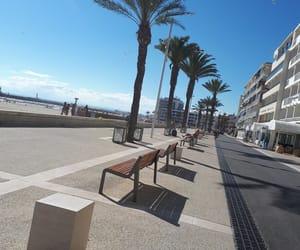 palmiers, plage, and grau du roi image