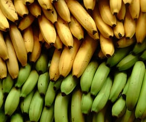 banana, green, and yellow image