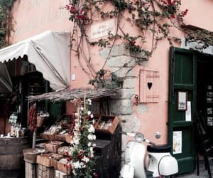 aesthetic, flower, and shop image