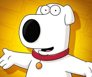 family guy, dog, and brian image