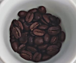 cacao, coffe, and deli image