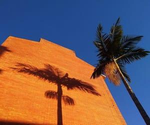 blue and orange image