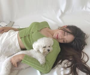 asian, beauty, and dog image