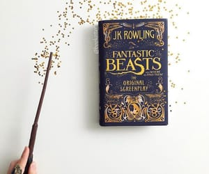 book, harry potter, and fantastic beasts image