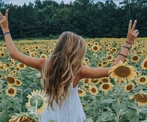 artsy, beautiful, and field image