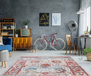 red, trending, and persian rugs image