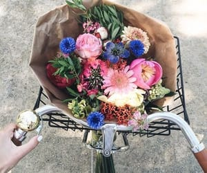 bicycle, flowers, and yellow image