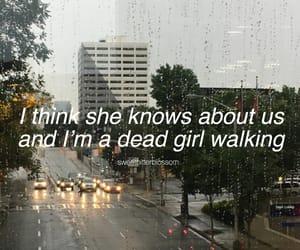 aesthetic, rain, and tumblr image