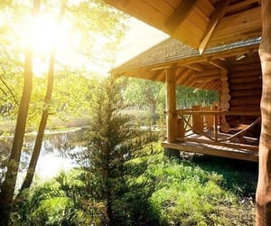 beauty, cabin, and 木漏れ日 image