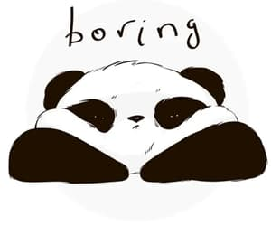 panda, boring, and wallpaper image