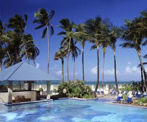 beaches, puerto rico, and resort image
