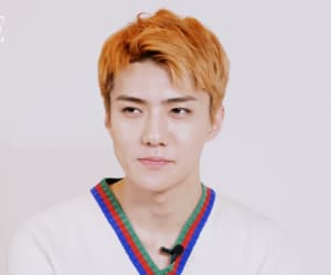 exo, osh, and sehun image