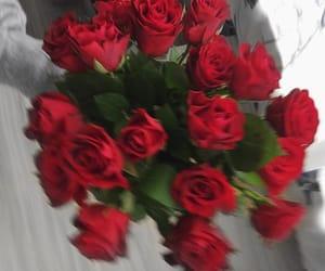 flowers, romance, and romantic image