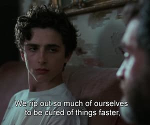 father, son, and call me by your name image
