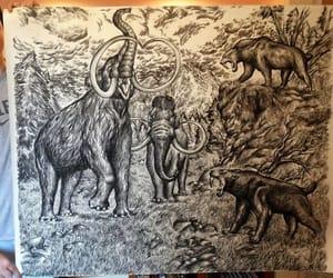 arte, blanco y negro, and dusan krtolica image