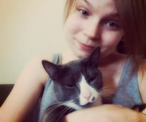 animal, brown hair, and cat image