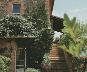 decor, exterior, and green image