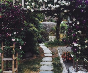 flowers, queue!, and gardens image