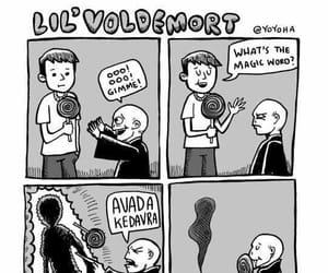 harry potter, meme, and voldemort image