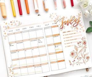 orange, bujo, and bullet journal image