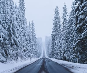 cold, nature, and travel image