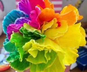 gay pride, pride, and pride colours image