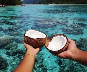 blue water, food, and coconut image
