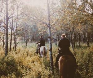 gentlemen, trees, and horse image