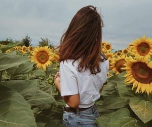 flowers, forever, and free image