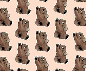 bear, patron, and pattern image
