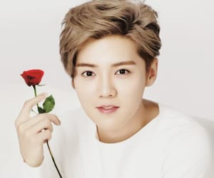 exo, singer, and luhan image