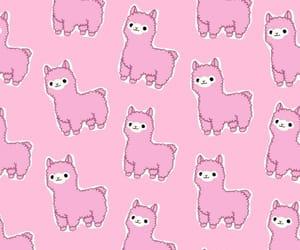alpaca, patron, and wallpaper image