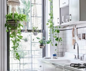 inspo, interior design, and kitchen image