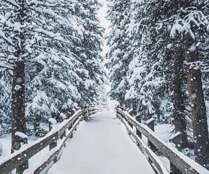 snow, walkway, and winter image