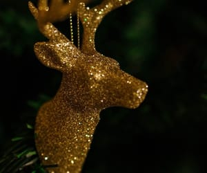 background, reindeer, and gold image
