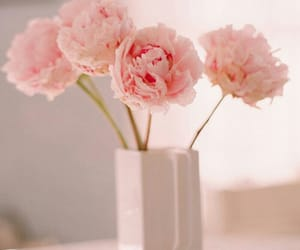 beautiful, pretty, and flowers image