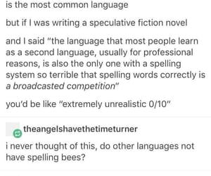english, funny, and languages image