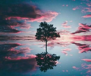 arbol, clouds, and nature image