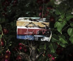 bibliophile, read, and sabriel image