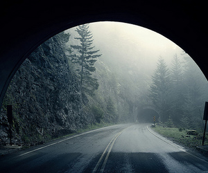 tunnel, nature, and road image