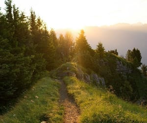 path, trees, and mountains image